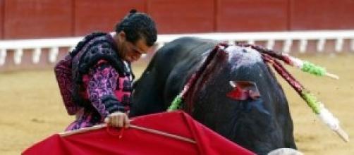 Evento en la plaza de toros
