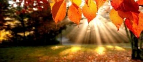 previsioni meteo ottobre 2014: autunno in arrivo?