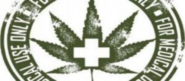 coltivazione della cannabis per l'esercito