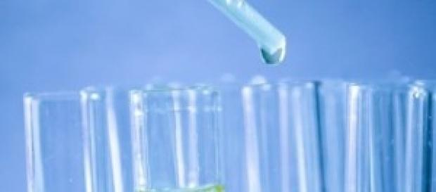 Urina para produzir fertilizantes e electricidade.