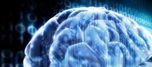 El cerebro y los ordenadores no son muy diferentes