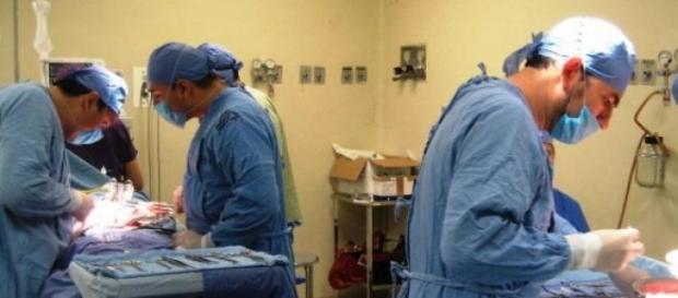 España, líder en donación de órganos