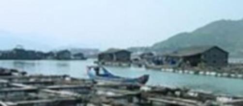 Ferme d'élevage de poissons en Chine
