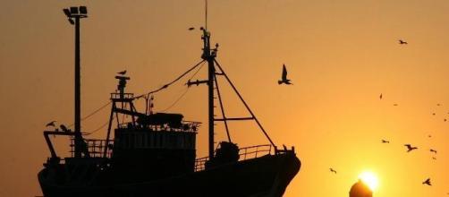 Cinco pescadores desaparecidos ao largo de Sintra