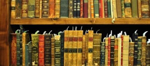 Ler é inútil. Precisamos apreciar as inutilidades