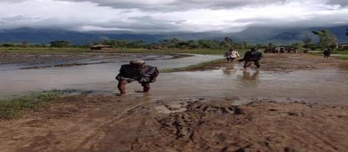 Maliwi, emergenza piogge in aumento