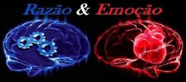 Desafio constante entre razão e emoção