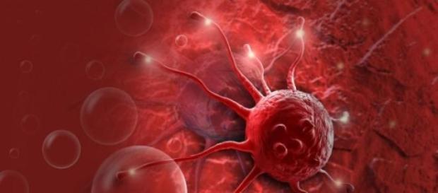 Cancerul - inca o enigma