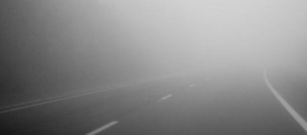 Cod galben de ceata in 11 judete