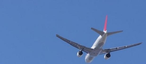 Companhias aéreas procuram portugueses