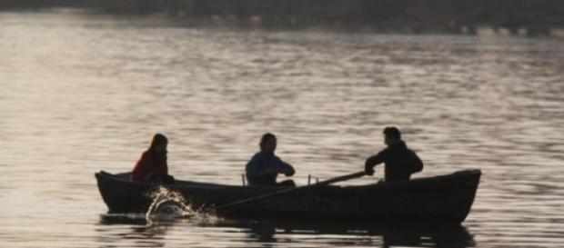 sectorul piscicol din Romania