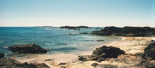"""As Ilhas Selvagens são um """"Templo"""" da natureza."""