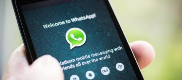 WhatsApp com versão nova