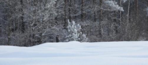 Vacanze sulla neve. Rispettiamo le regole.