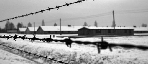 1,5 millions de personnes sont mortes à Auschwitz.