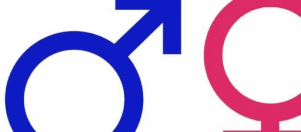Hombres y mujeres, diferentes pero complementarios