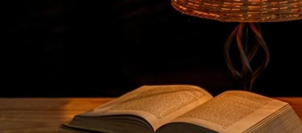 Como ler melhor e transformar a nossa mente?