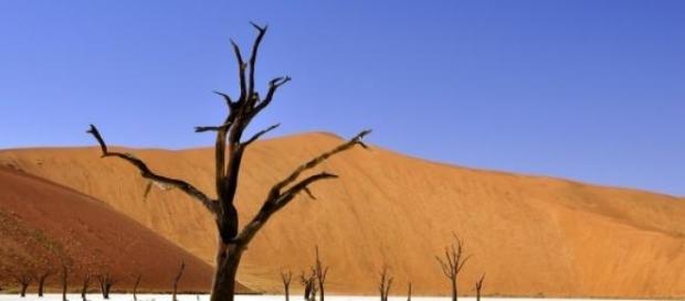 Namibia, lugar óptimo para las tonalidades simples