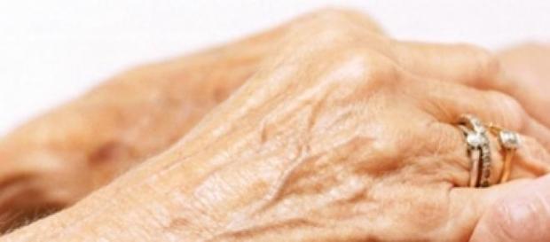 batrani, Alzheimer, boli,