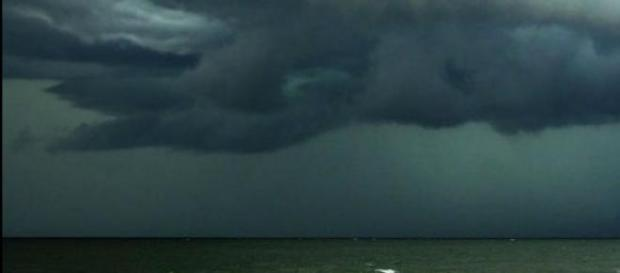Perder oxígeno afecta a la biodiversidad marina