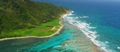 Anticipazioni Isola dei Famosi: parlano naufraghi.