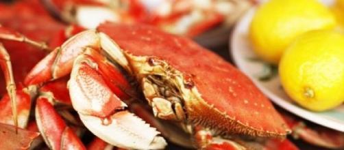 Cangrejo: un deleite del mar