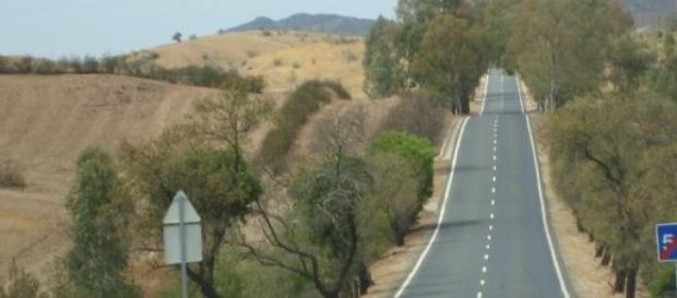 Em 2014 morreram 480 pessoas nas estradas