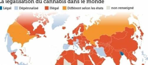 Terra Nova propose la légalisation du cannabis
