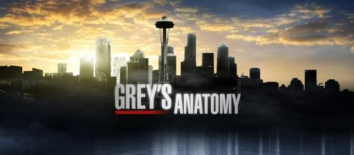 Grey's Anatomy 12x02: Walking Tall