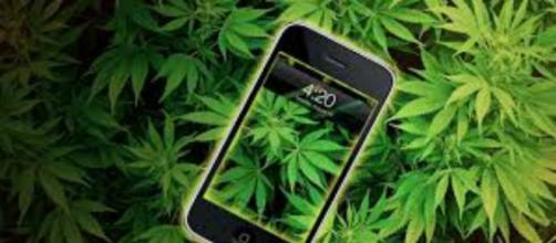 Legalize it ,Cannabis i phone !