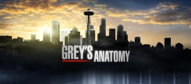 Grey's Anatomy 12x02: Walking Tall