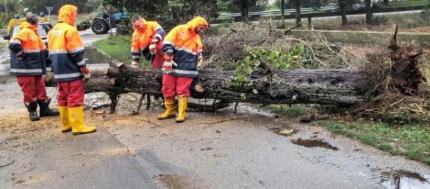 Il meteo avverso ha creato molti danni nel Salento