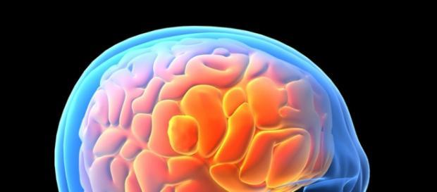 The Most Brain damaging Habits
