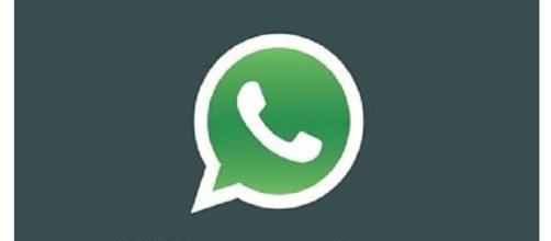 Archiviare dati da WhatsApp, ora si può