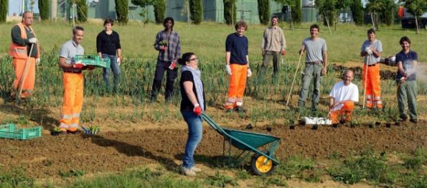 Proyecto un huerto en la red, Italia