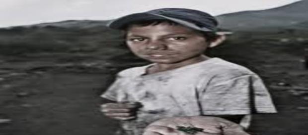 Niños trabajando sin prestaciones, ni seguro