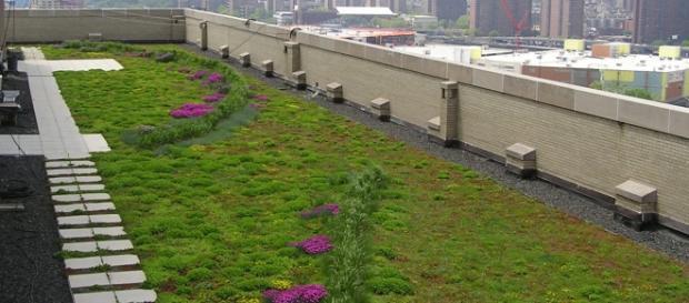 Ekologiczne dachy przyszłości/źródło: www.bceq.org