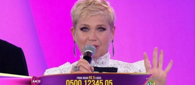 'Teleton' faz SBT vencer a Globo e Record