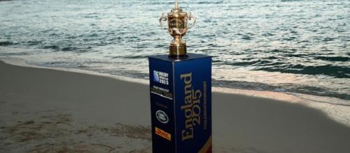 New Zealand will battle Australia in the final