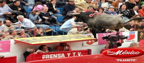 Foto propiedad página web plaza de toros México