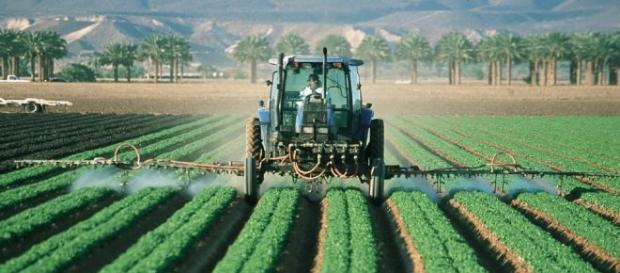 Reforma rolnictwa - podatek i KRUS po staremu