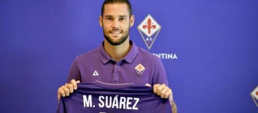 Mario Suarez, centrocampista della Fiorentina