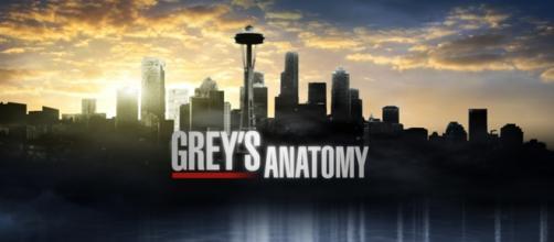 Grey's Anatomy 12: trama settima puntata USA