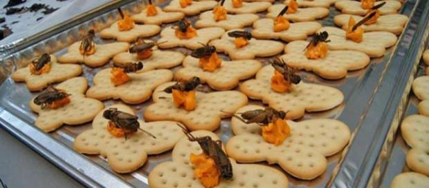 Cookies with a crunchy twist..
