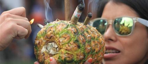 Colombia y la legalización de la marihuana