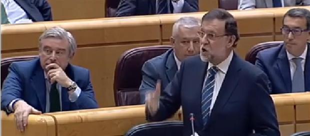 Cap de Pant Mariano Rajoy en el senado