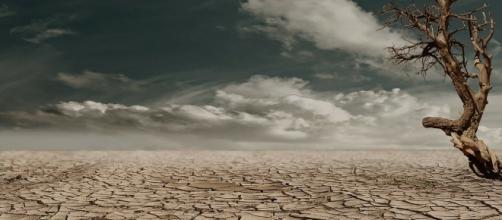 Milhares de hectares de terra viram deserto