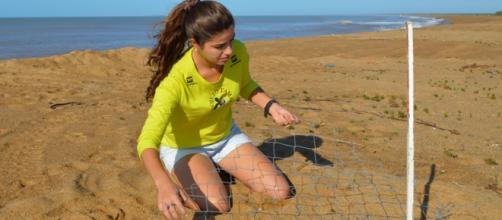 Ninhos de tartarugas sendo retirados do Rio Doce