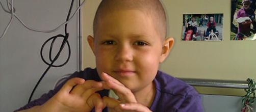 """Proyecto """"Lydia"""" de investigación de la leucemia"""