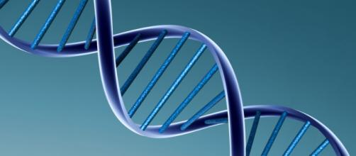 La modificación genética aplicada en humanos